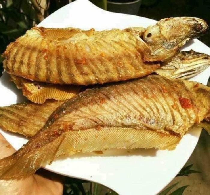 cá thát lát rút xương 2